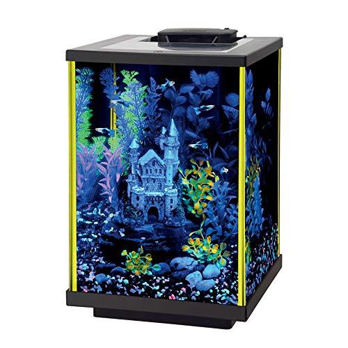 Aqueon NeoGlow LED Aquarium Kit, 5 Gallon