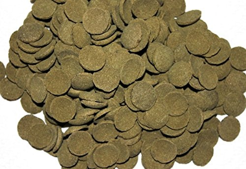 Hausmarke Welschips Algae Wafers Plecos für Welse Corydoras Futtertabletten Spirulina Welsfutter (500 ml)