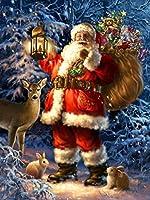 5D クリスマス ダイヤモンド ペインティング キット 大人用 フルドリル DIY サンタクロース ダイヤモンド ペインティング 番号キット ラインストーン 刺繍 ピクチャー クロスステッチ アートクラフト ホームウォールデコレーション