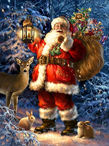 5D Christmas Diamond Painting Kits for Adults Full Drill DIY Santa Claus Diamond Painting by Number Kits Rhinestone Embroidery Pictures Cross Stitch Arts Crafts for Home Wall Decor