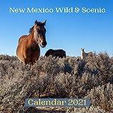 New Mexico Wild & Scenic Calendar 2021
