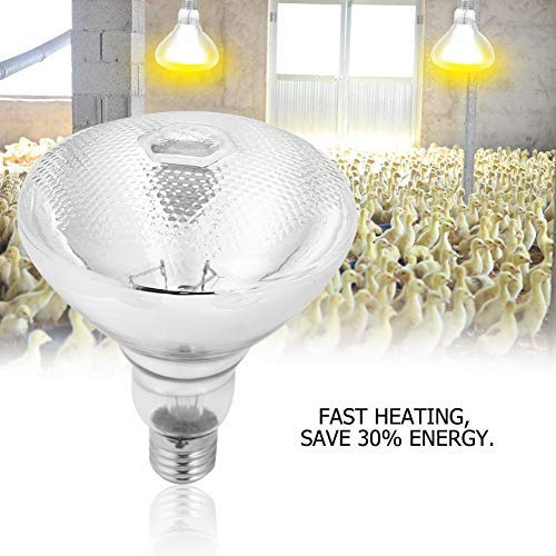 xingbailong Red Rough Surface Heat Lamp Waterproof Anti-explosion Light Bulb for Piglet Chicken Duck Birds 100W