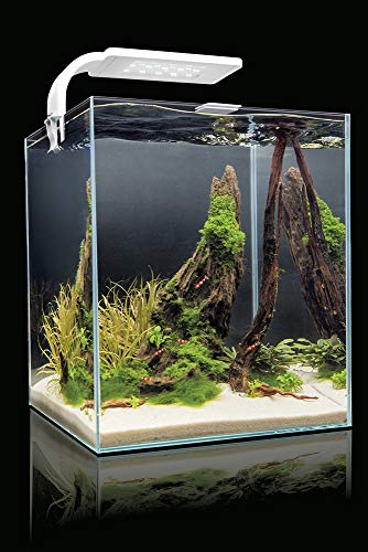 Aquael - Set Acquario per Gamberetti con Illuminazione Moderna A Led Smart, 25 x 25 x 30 and 19 litri