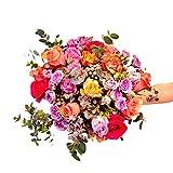 Ramo de flores Aconagua - Flores RECIÉN CORTADAS y NATURALES de Gran Tamaño - ENTREGA EN 24h con Dedicatoria Personalizable Gratuita - FLORES FRESCAS PARA DEDICAR