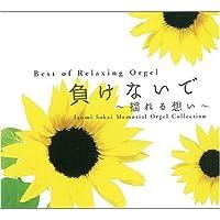 Sakai Izumi Tuirou Orgel [2cd] by Makenaide Yureru Omoi (2007-12-13)