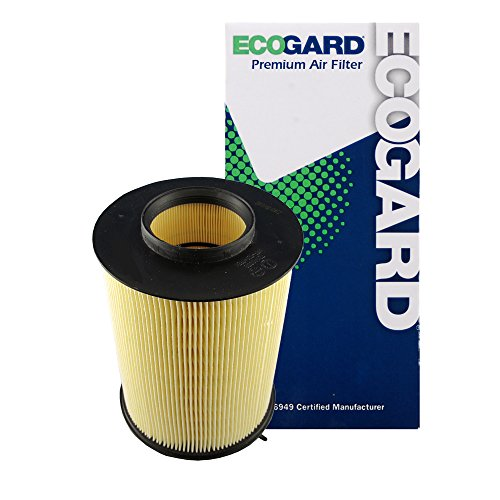 ECOGARD XA6149 Premium Engine Air Filter Fits Ford Focus 2.0L 2012-2018, Escape 2.0L 2013-2019, Escape 1.5L 2017-2019, Escape 1.6L 2013-2016, Focus 1.0L 2015-2018, EcoSport 1.0L 2019