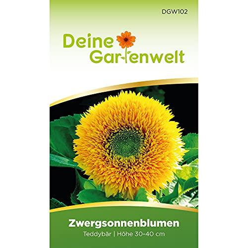 Zwergsonnenblumen Teddybär Samen - Helianthus annuus - Zwergsonnenblumensamen - Blumensamen - Saatgut für 30 Pflanzen