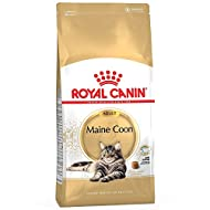 Royal Canin 4kg Maine Coon Adult Complete Cat Food Sold by Maltby's