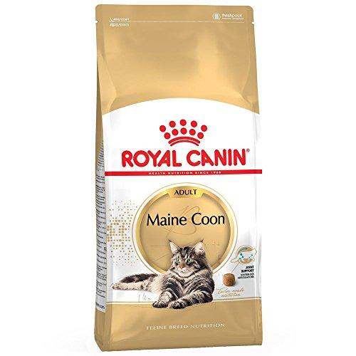 Royal Canin Comida para gatos de Maine Coon para adultos, 4 kg, vendido por Maltby's