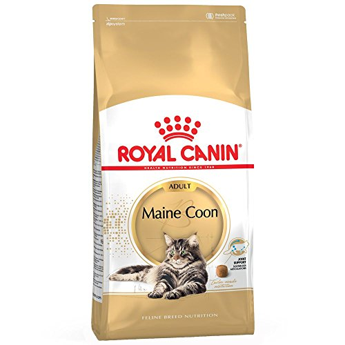 4 kg Royal Canin Maine Coon adulto completa comida para gato vendida por Maltby's