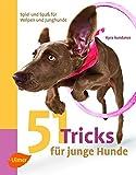51 Tricks für junge Hunde: Spiel und Spaß für Welpen und Junghunde - Kyra Sundance