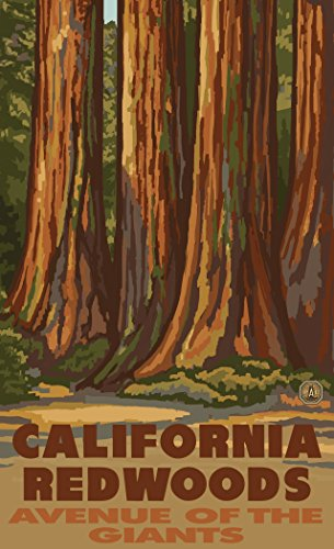 Northwest Art Mall PAL-6426 TS California Redwoods Avenue of The Giants 11x17 Print by Artist Paul A. Lanquist