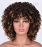 Short Afro Curly Wigs with Bangs for Women 2 Tone Ombre Dark Brown Kinky Curly Hair Wig for Black Women Synthetic Heat Resistant Full Wigs (Ombre Brown)