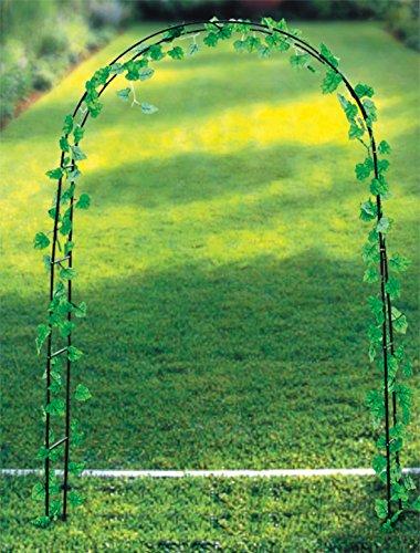 ARCO DECORATIVO Para Flores y Plantas RAMPICANTI 137 X 38 X 200 cm.