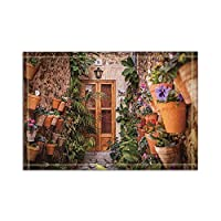HiYash ヨーロッパの要素の壁に鉢植えの植物風呂の敷物滑り止めの床の玄関口屋外屋内玄関マット、15.7x23.6inバスマット