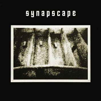 Synapscape