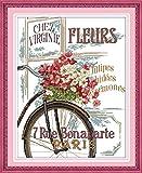 Hanzeze Kits de Bordado Punto Cruz - Bicicleta de flores DIY 11CT Estampado adulto Tejido preimpreso Patrón simple niñas Manualidades Regalo de vacaciones 40 x 50cm