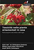 Tossicità nelle piante ornamentali in casa: Piante tossiche nella lettiera delle foglie