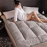 Aany - Colchón, tatami estudiante, cojín suave de franel para dormir de suelo de fibra de poliéster, grosor plegable, 10...