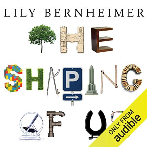 The Shaping of Us audiobook cover art