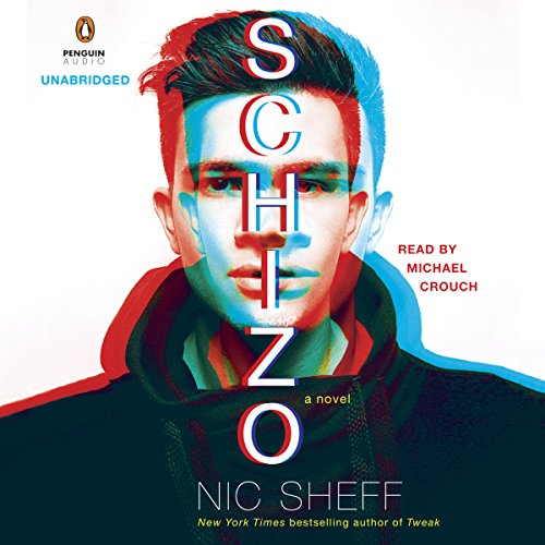 Schizo: A Novel cover art