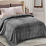 Whale Flotilla Flannel Fleece Queen Size(90x90 Inch) Lightweight Bed Blanket, Soft Velvet Bedspread Plush Fluffy Coverlet Chevron Design Decorative Blanket for All Seasons, Dark Grey