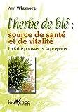 L'herbe de blé, source de santé et de vitalité