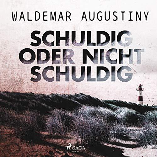 Schuldig oder nicht schuldig audiobook cover art