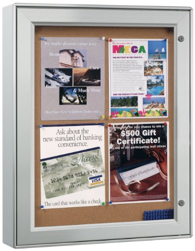 Displays2go Wall-Mounted Enclosed Bulletin Board, 23-1/4 x 29-3/4 Inches, Aluminum Frame, Weather Resistant, Swing-Open Locking Door for Indoor or Outdoor Use (ODNBCB4A4)