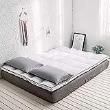 zyl Colchón de Plumas Tela cepillada Suave y cómodo 180 * 200 cm Adecuado para colchones de Dormitorio colchones para el...