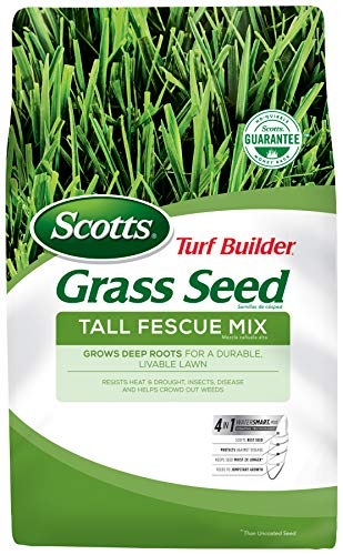Scotts Turf Builder Grass Seed Tall Fescue Mix, 7 lb. - Full Sun and Partial Shade - Resists Heat and Drought, Insects, Disease and Helps Crowd Out Weeds - Seeds up to 1,750 sq. ft