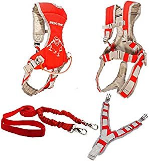 Top 10 Best Child Ski Harness Reviews Of 2021
