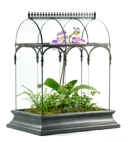 Hanging glass terrarium for plants