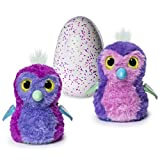Hatchimals Glittering Garden [Sparkly Pengualas] - Includes 2 Season 1 Hatchimals Colleggtibles