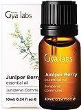 Aceite esencial de bayas de enebro - una renovación clara y segura de belleza libre de imperfecciones (10 ml) - aceite esencial de enebro de grado terapéutico 100% puro