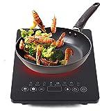 Placa de inducción individual de 2000 W, 50 Hz, mini cocina de inducción integrada, 220 V, capacidad de carga  5 kg