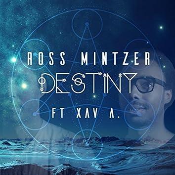 Destiny (feat. Xav A.)