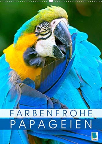 Farbenfrohe Papageien (Wandkalender 2021 DIN A2 hoch)