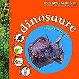 Dinosaure iguanodon, fougère, barosaurus, compsognathus (JE VEUX TOUT SAVOIR)