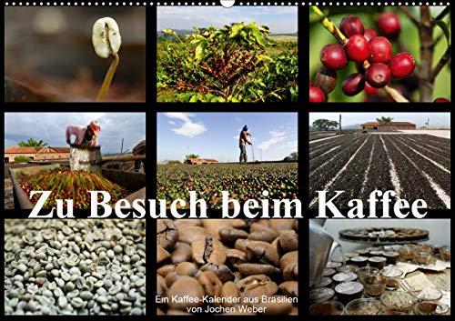 Zu Besuch beim Kaffee (Wandkalender 2021 DIN A2 quer)