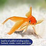 Immagine 2 aquarian complete nutrition aquarium goldfish
