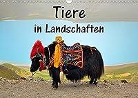 Tiere in Landschaften (Wandkalender 2022 DIN A3 quer): Tiere aus aller Welt vor markanten Hintergruenden (Monatskalender, 14 Seiten )