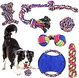 phyles giochi per cani, giochi per cani resistenti da masticare, set giochi interattivi cani diversi colori e forme adatto a cani di piccola e media taglia