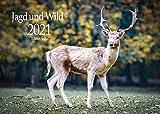 Edition Seidel Jagd und Wild Premium Kalender 2021 DIN A3 Wandkalender Tiere Wald Natur -