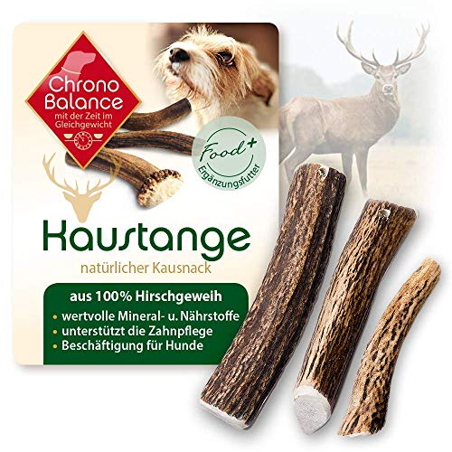 ChronoBalance® Geweih-Kaustange M (halbiert) für Hunde - 100% Hirschgeweih - Kauspielzeug, Zahnpflege, Kausnack, Geweih, Kauknochen