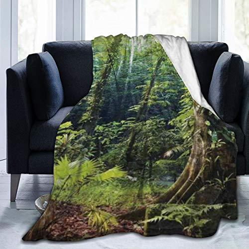 keiou Cómoda Manta de Franela Fina,Rainforest Morning Sunbe