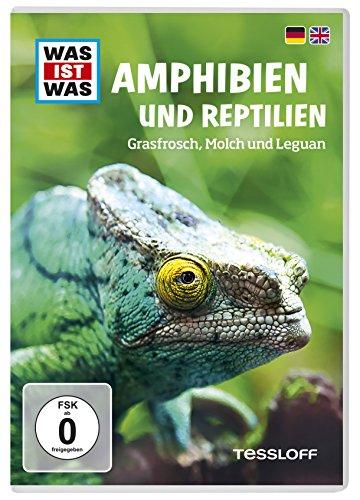 Was Ist Was DVD Amphibien und Reptilien. Grasfrosch, Molch und Leguan