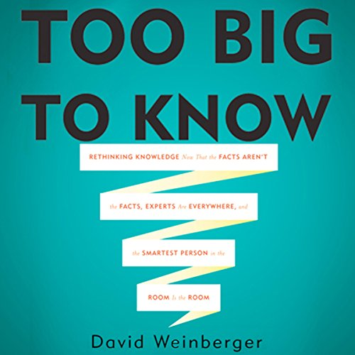 Too Big To Know cover art