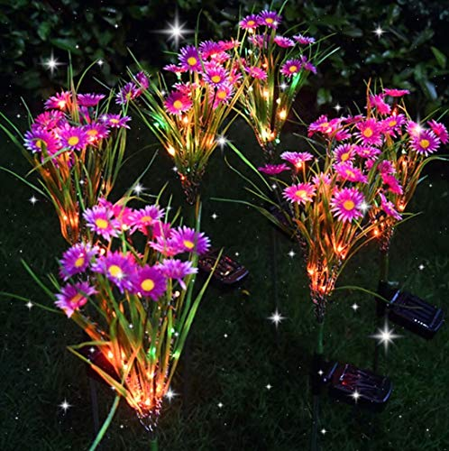 GUANSHAN 2 PC Solarleuchten für den Außenbereich, Solarblumenleuchten für Gänseblümchen, Solarlampe für Vergewaltigungsblumen, LED-Solar-Rasenleuchte, Perfekt für Garten, Garten, Terrasse, Lila