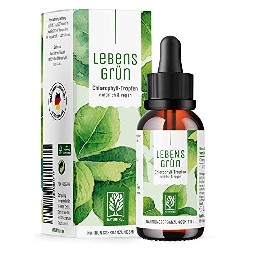 Zenkoh GmbH -  Lebensgrün